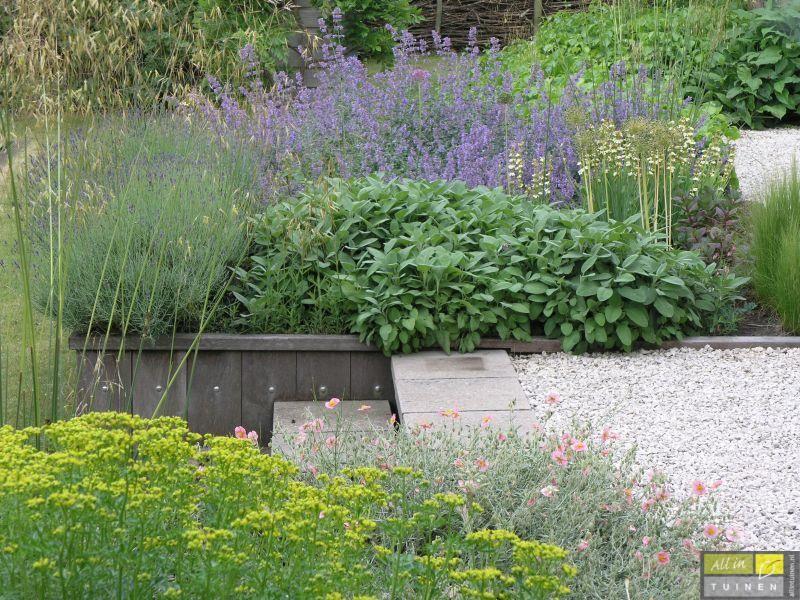 Onderhoudsvriendelijke Tuin Aanleggen : Plantrijke tuin tuin met weinig onderhoud onderhoudsvriendelijke