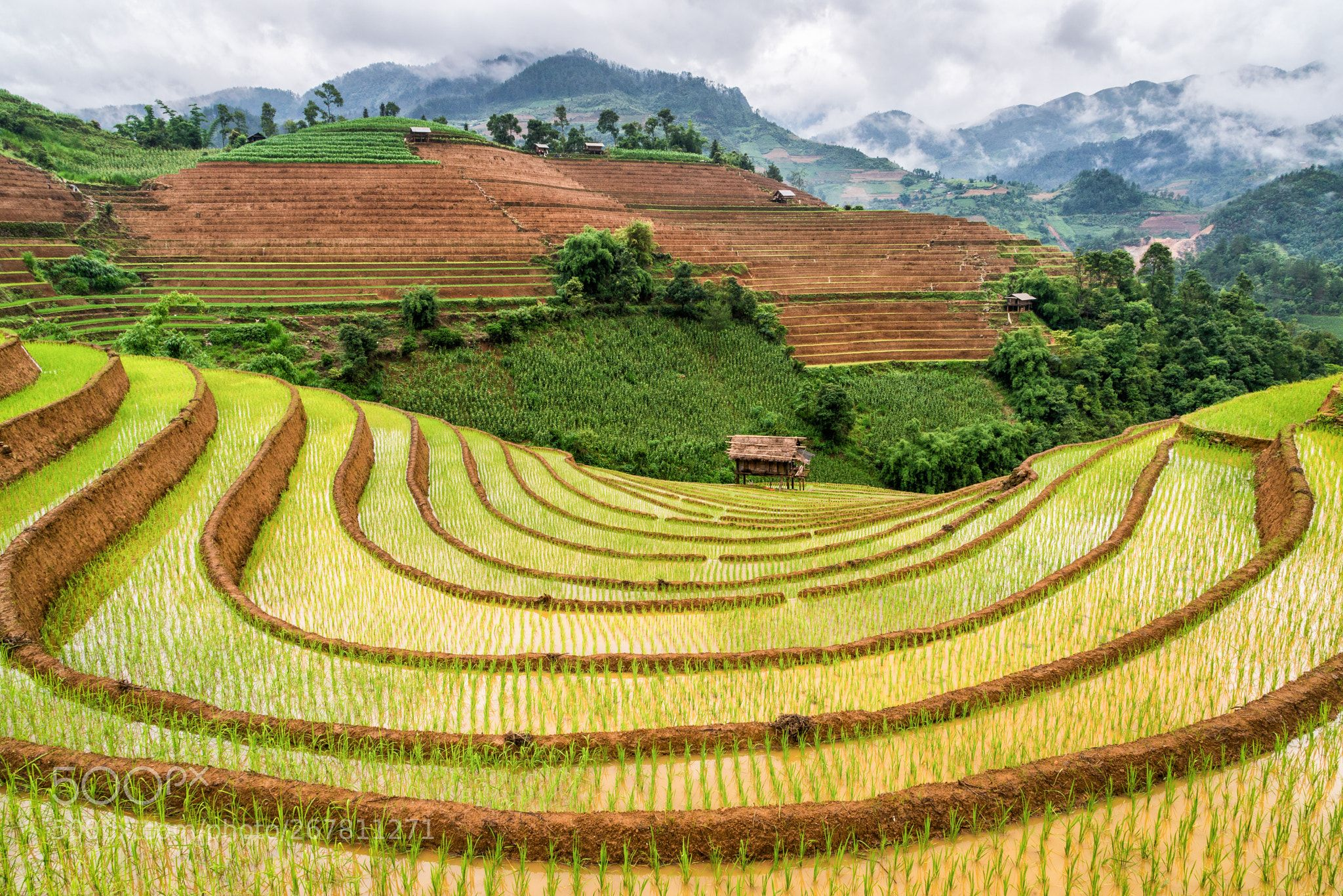 Mu Cang Chai, Vietnam   Vietnam, Tourism, Laos