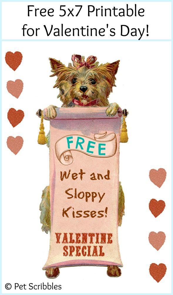 Free Printable Dog Valentine Valentine Fun Dog Valentines Valentine Day Cards