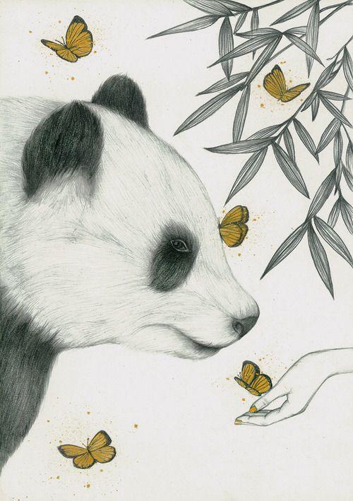 Download 61+ Gambar Panda Arsiran Paling Bagus Gratis