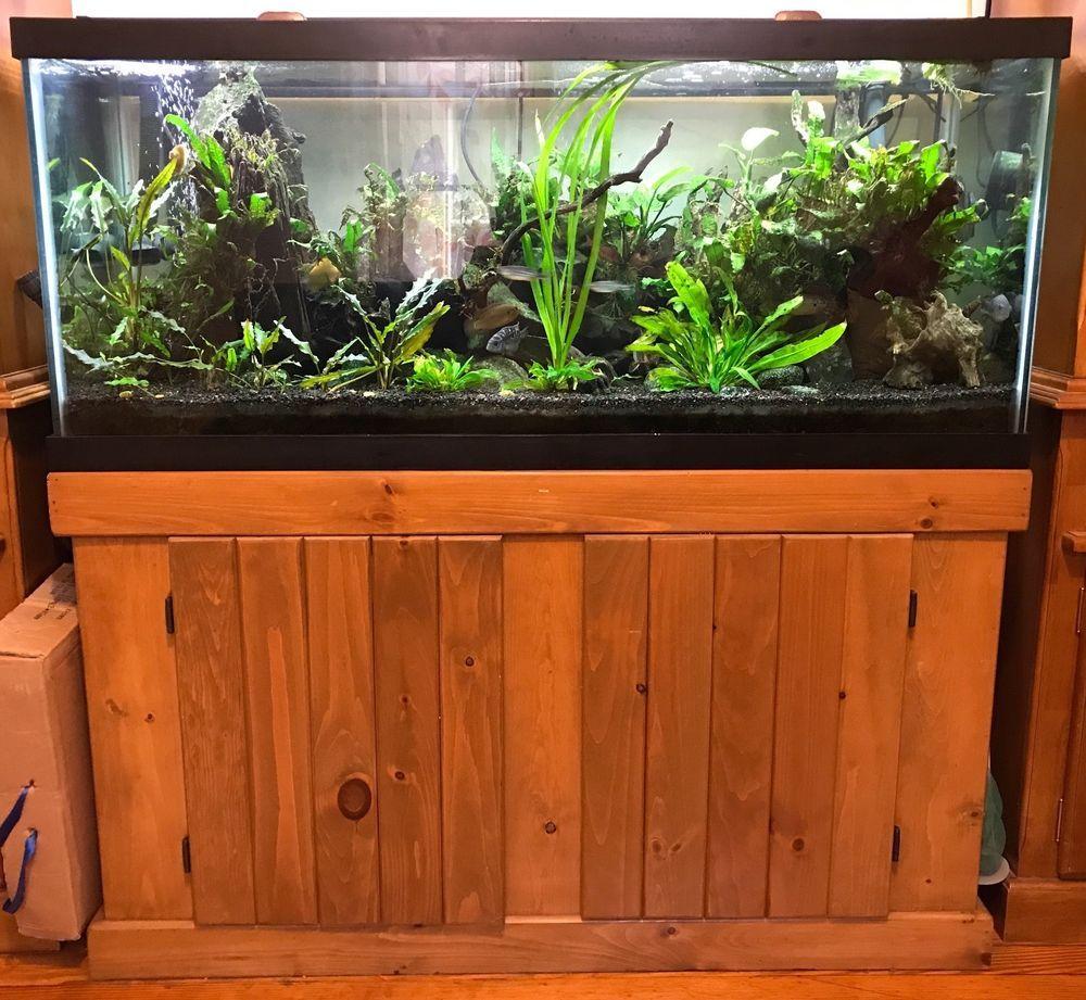 Aquarium 75 gallon tank stand filter led light pump