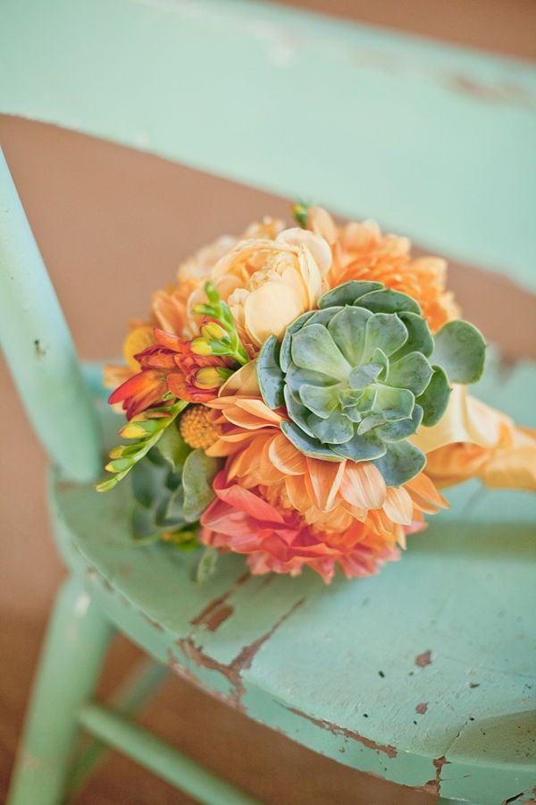 peach + succulents