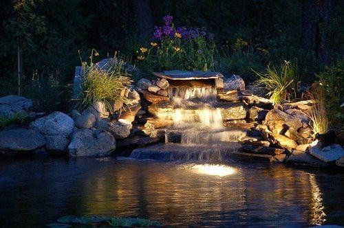 Pond Lighting Ponds Backyard Lights Indoor