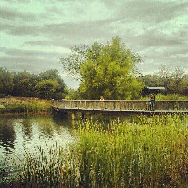 Cedar Creek Lake, Cedar Creek