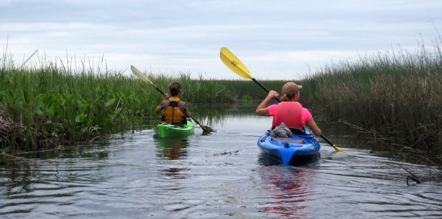 Kayaking through the South Carolina Lowcountry's ACE Basin