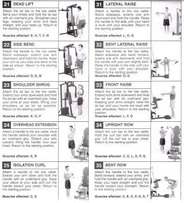 Bowflex Workout Guide Pdf