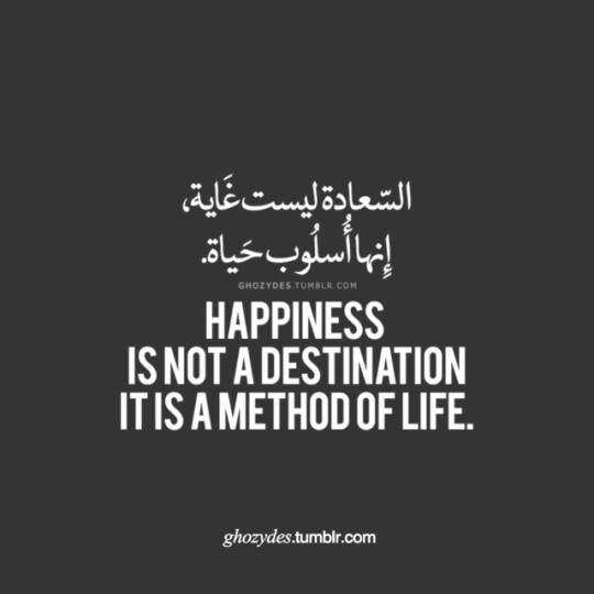 Quotes اقتباسات Wisdom Quotes Life Insulting Quotes Postive Quotes