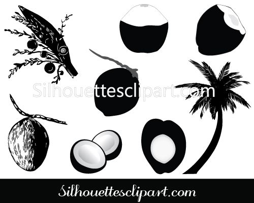 35+ Coconut Clipart Black And White