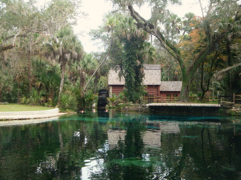 https://flic.kr/p/7hrQSb | Swimming Area at Juniper Springs Millhouse | Swimming is allowed in the spring feed pool in front of the millhouse.  A platform is positioned for jumping into the deepest area of the pool and steps provide return to the platform.