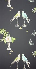 perroquet wall paper