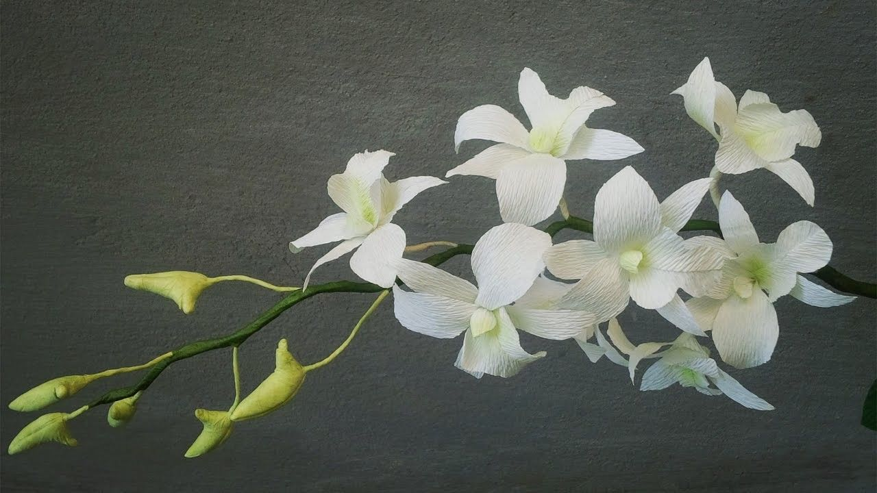 Abc Tv How To Make White Dendrobium Orchids Paper Flowers From