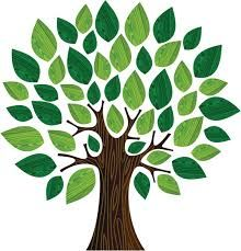 Arbol Dibujo Buscar Con Google Trees Dibujos Manualidades