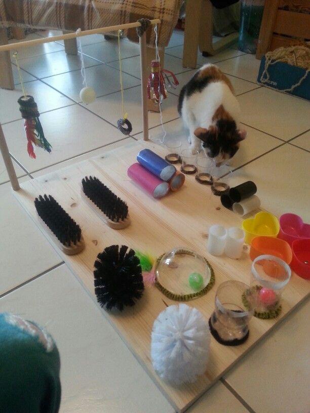 Katzenspielbrett  Pet Ideas  Diy cat toys Cat Toys und