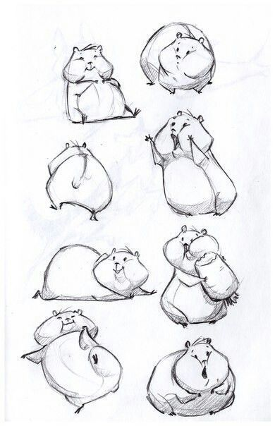 How to draw animals Hamster animals how draw ham