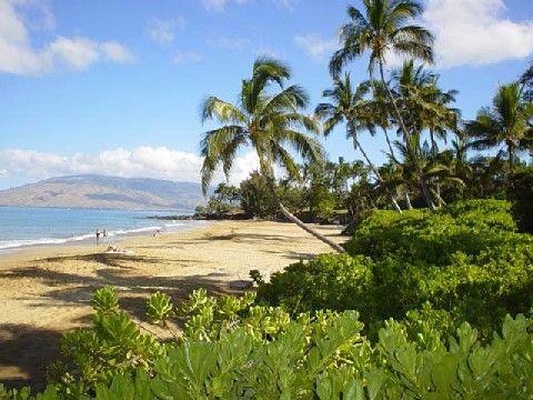 Kihei in Maui. Heading there in December 2011. eeee!