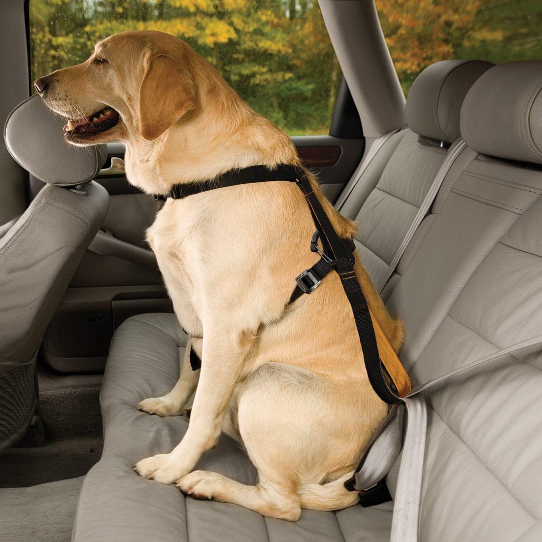 Enhanced strength trufit dog car harness dog seat belt