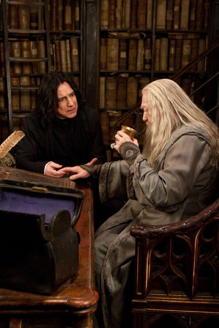 Dumbledore Snape Harry Potter Potterhead Harrypotterhumor Harry Potter Filmleri Severus Snape Harry Potter