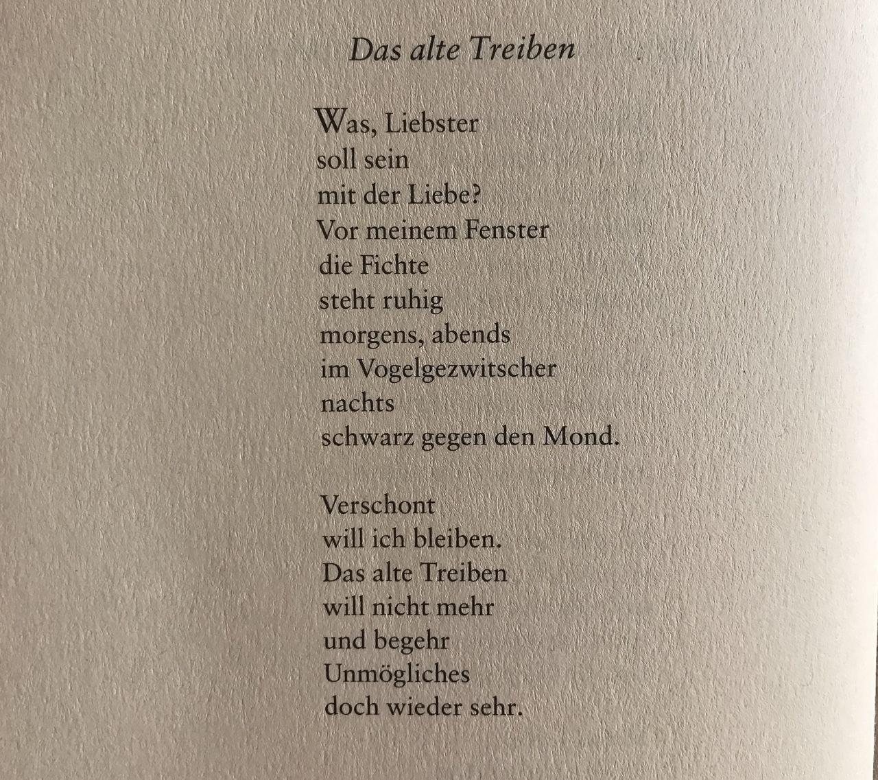 Liebesgedichte kurz und schön auf deutsch