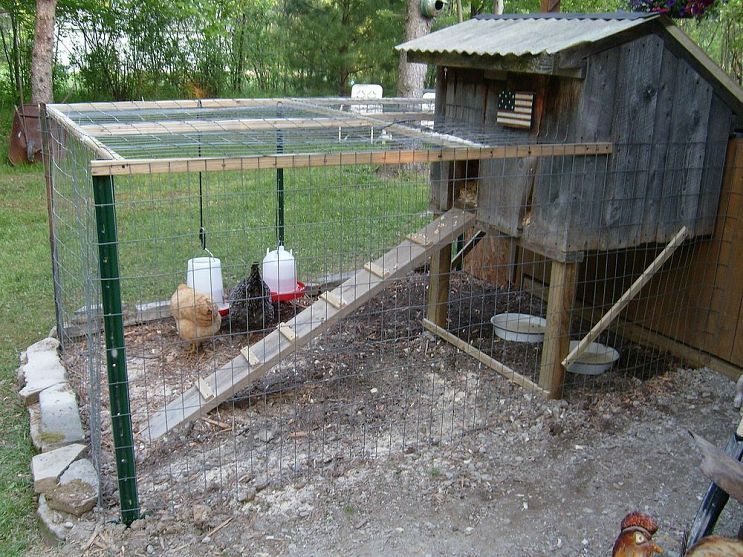 My new chicken coop made from old barnwood for for Old farm chicken coops