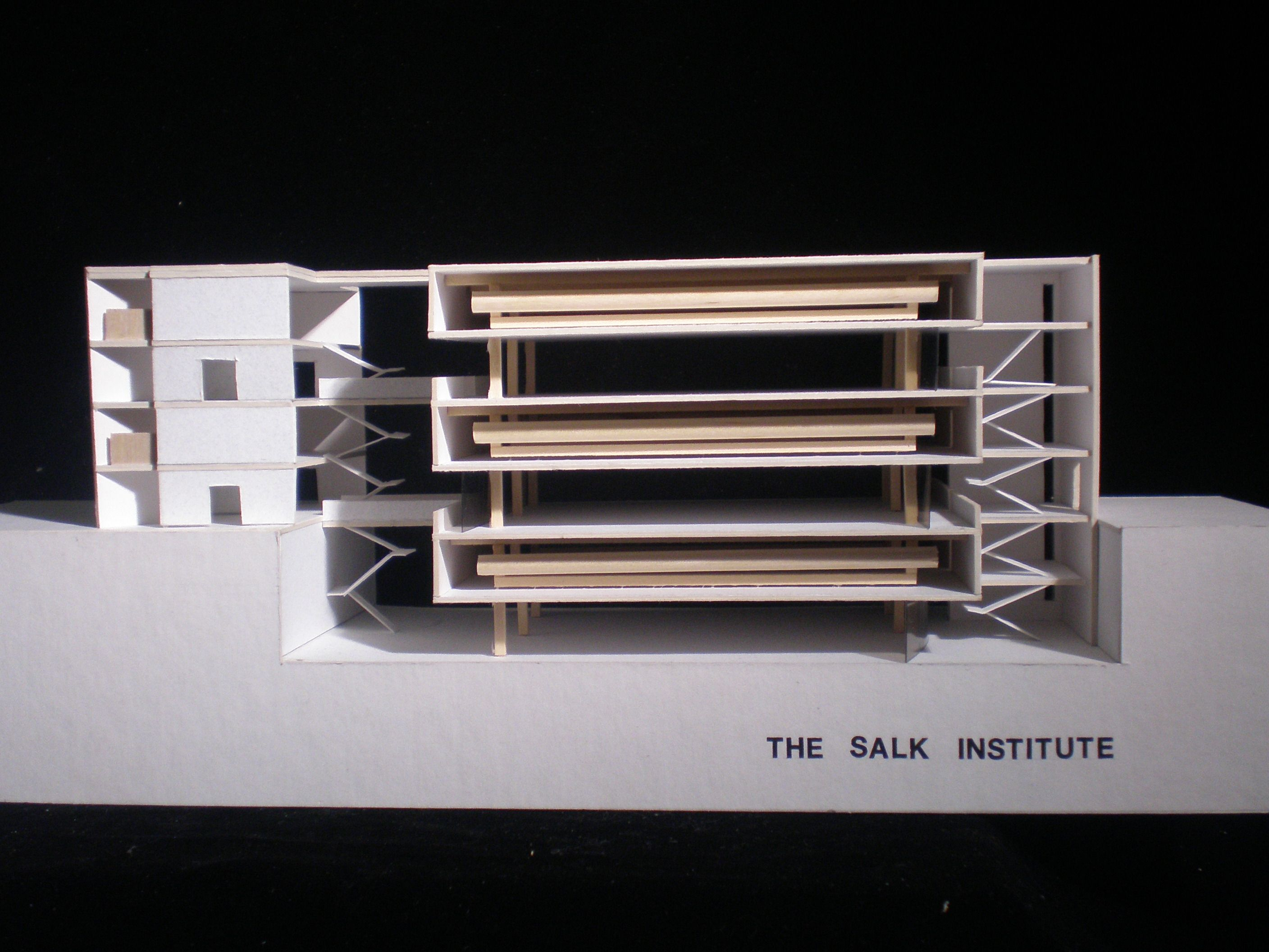 an analysis of the architectural design of louis kahns the salk institute Salk institute for biological studies archives/louis i kahn collection, architectural archives, university of pennsylvania the salk has been responsible for major breakthroughs in neurobiology, genome mapping, and stem cell research elements of the design, such as the way natural light illuminates the.