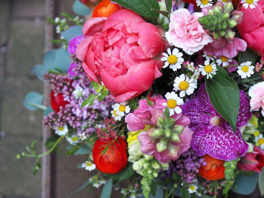 Https Blumen Koch De De Blumen Bestellen 1 Bestseller 20der 20woche Blumen Blumen Online Frische Blumen