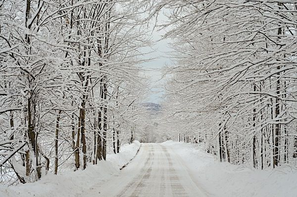 Vermont - Where the setting for the movie White Christmas takes place.