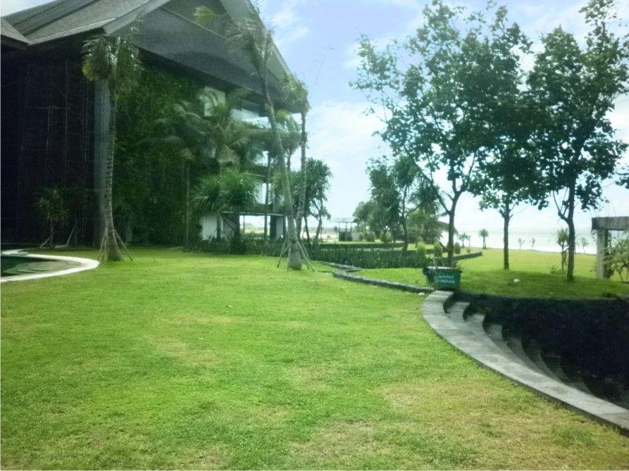 Vertical garden Indonesia/Taman Vertikal indonesia Sea