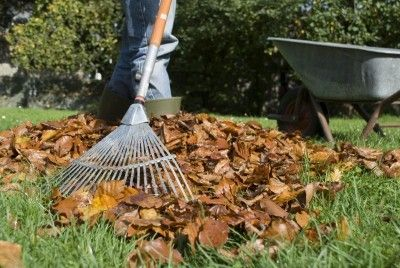 Lawn Care In Autumn: Tips On Grass Care In Fall - So summer is over and so is all the lawn maintenance that goes with it, right? Not so fast. Lawn care doesn't just stop when the grass stops growing. Find out how to take care of grass during fall months in this article.