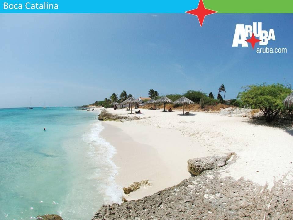 Ecco a voi la spiaggia Boca Catalina, una piccola baia sull'isola di Aruba, ideale per una giornata in tranquillità! #Aruba #Caraibi