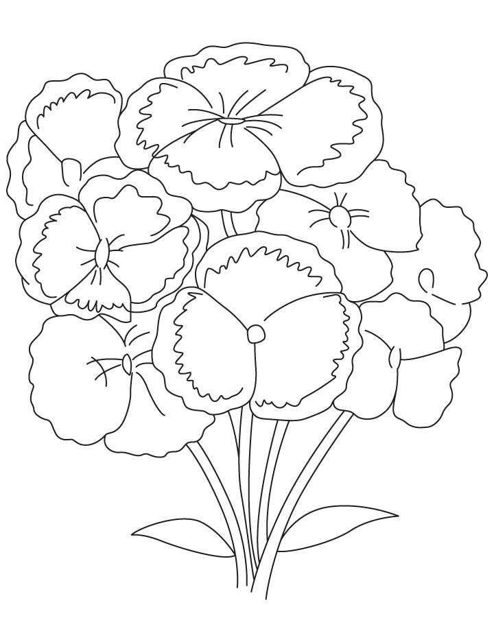 Bunch Of Carnation Coloring Page Coloring Pages Carnation