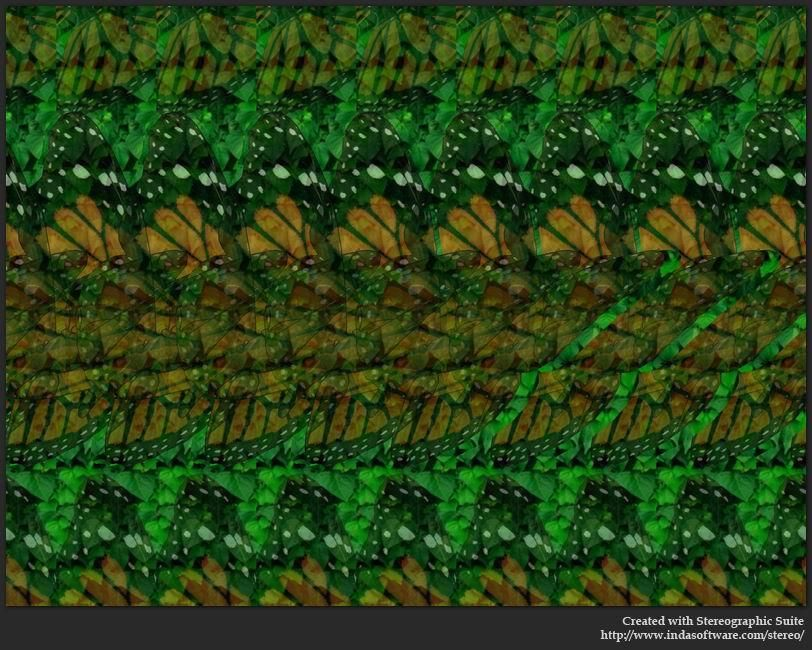3d Hidden Pictures Butterfly Stereogram Images Games Video And Software All Free Magic Eye Pictures Magic Eyes Cool Optical Illusions
