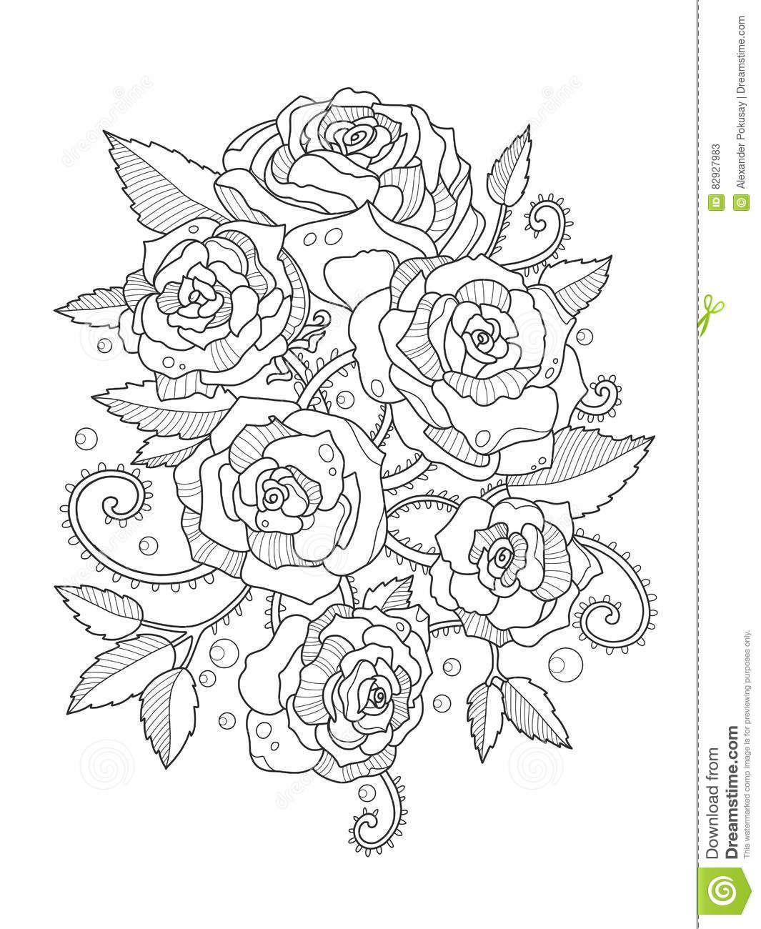 Libro De Colorear De Las Rosas Para El Vector De Los Adultos ...