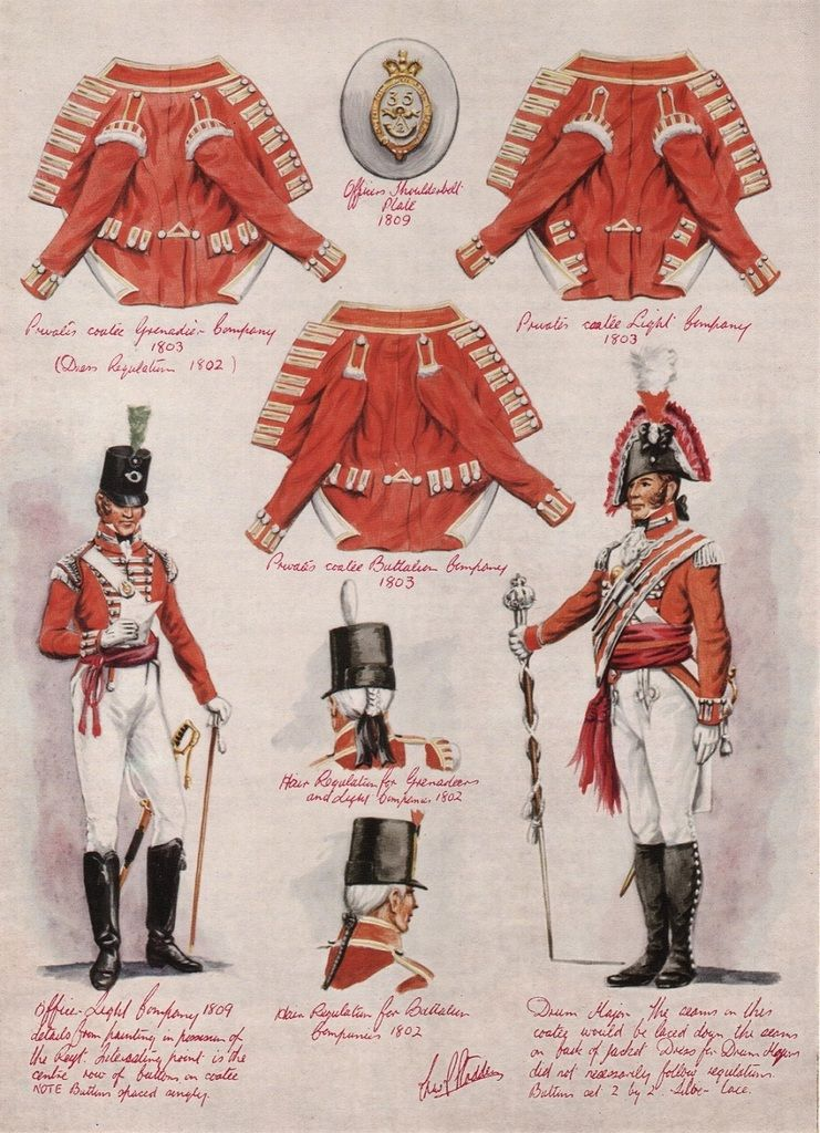 35th Sussex Regiment Of Foot By Charles Stadden British Army Uniform British Uniforms British Army