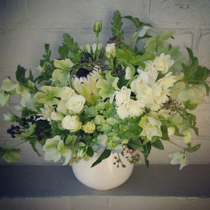 Helebore, jonquils, hydy, protea, ivy, spray roses