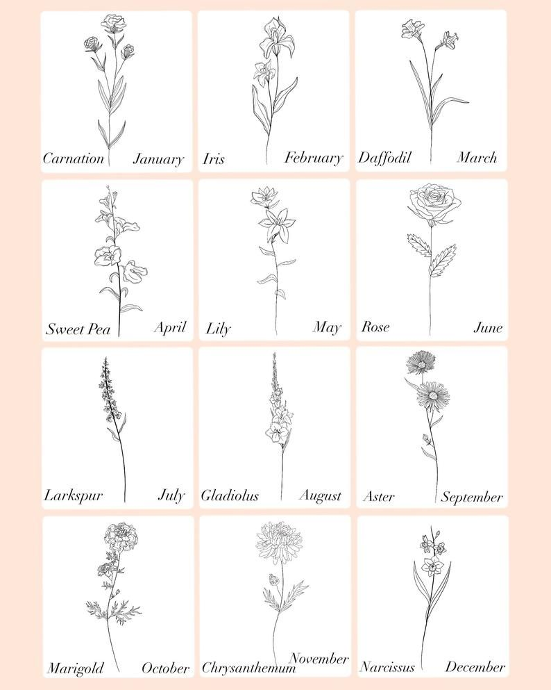 Birth Month Flower | Digital File
