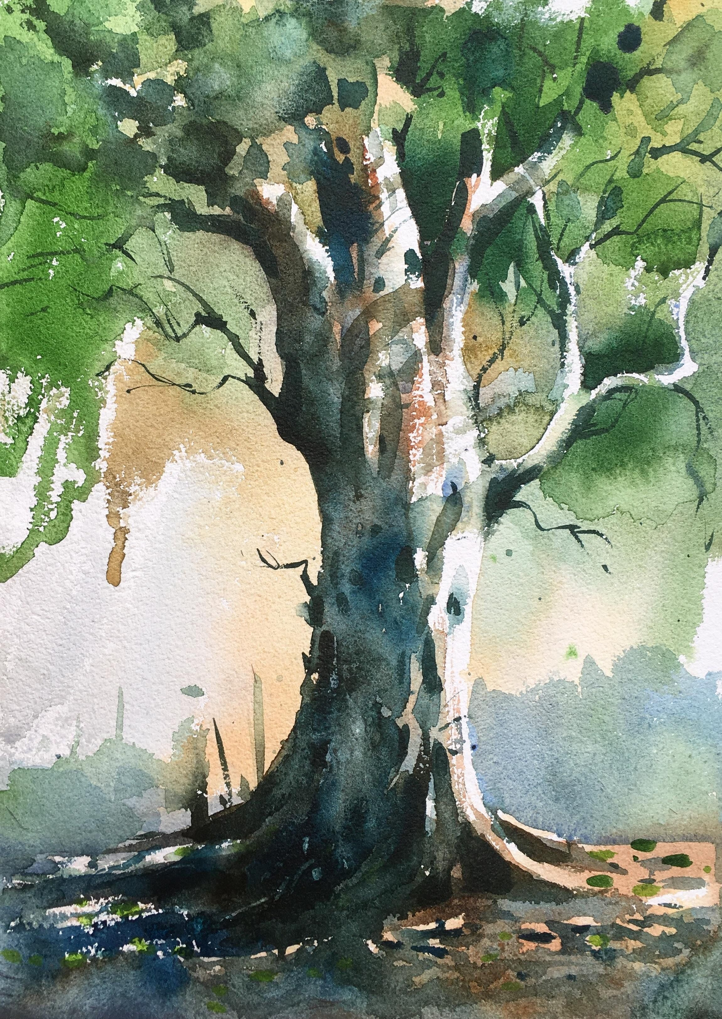 Tree Watercolor On Paper Size 15 X 11 Inches Art Art