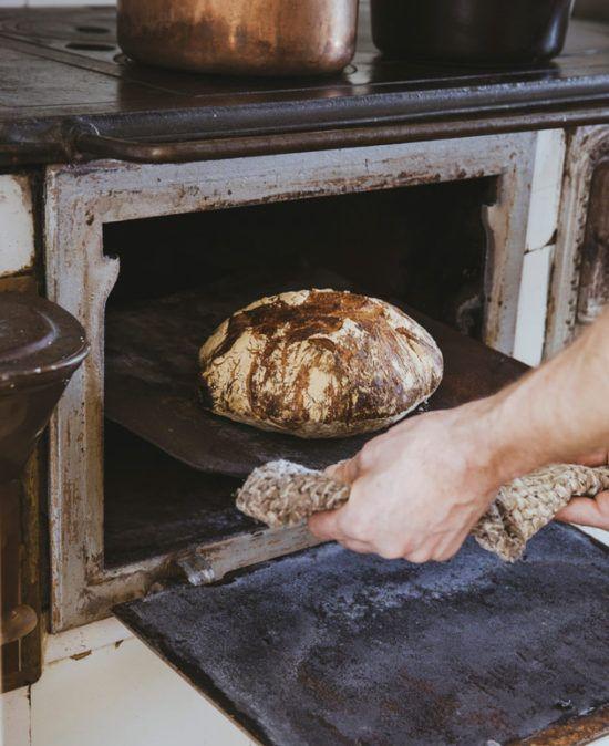 Leipäjuuri