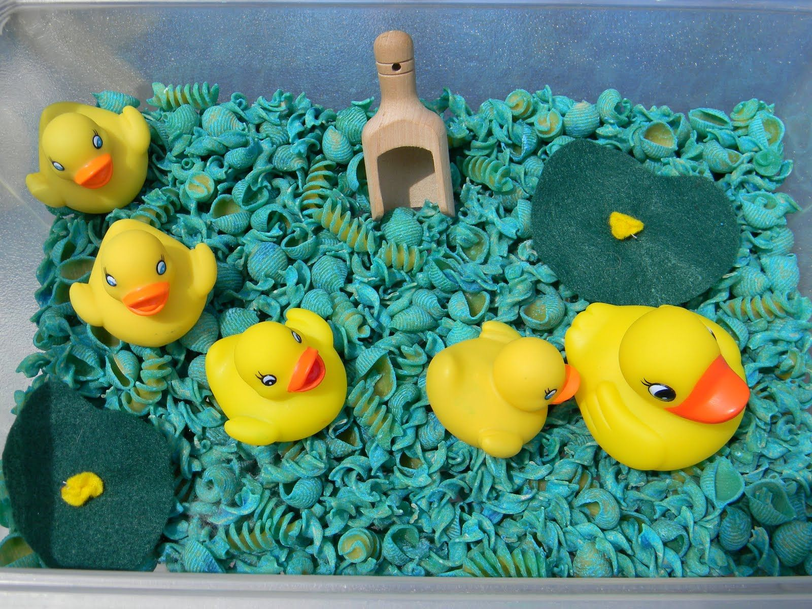 Jada Roo Can Do 5 Little Ducks Sensory Bin August