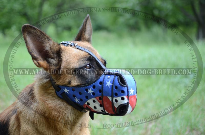 American Pride #Muzzle for #German #Shepherd #Agitation #Training $79.00 |  www