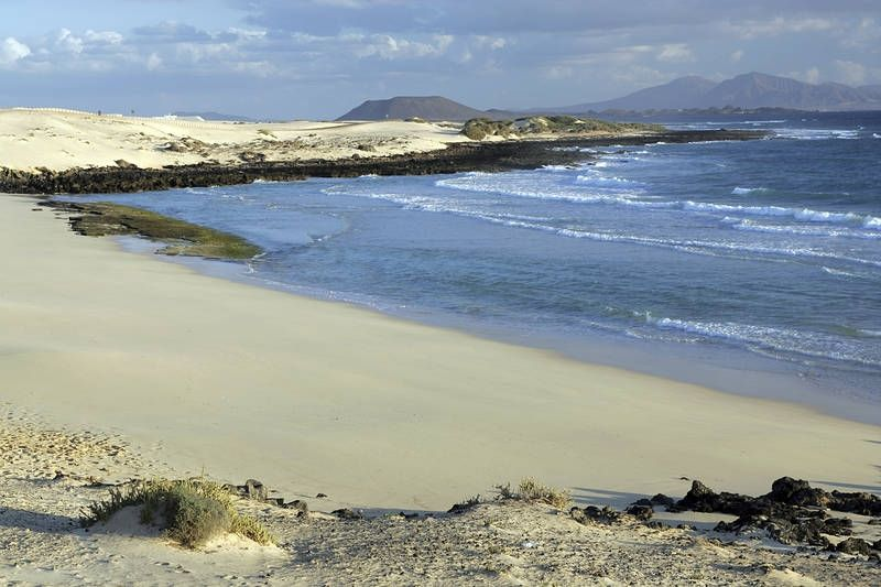 #Fuerteventuran allot sopivat surffaukseen erinomaisesti. Dyynien rauhassa mieli rentoutuu.