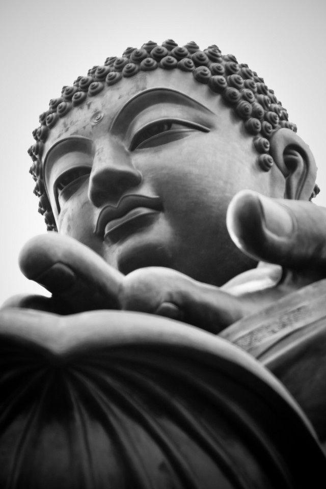 Tian Tan Buddha Hong Kong Buddha Buddhism Buddha Image