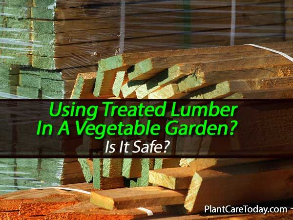 da32a490e1dc742892bb155a087167c9 - Is Pressure Treated Wood Bad For Gardens