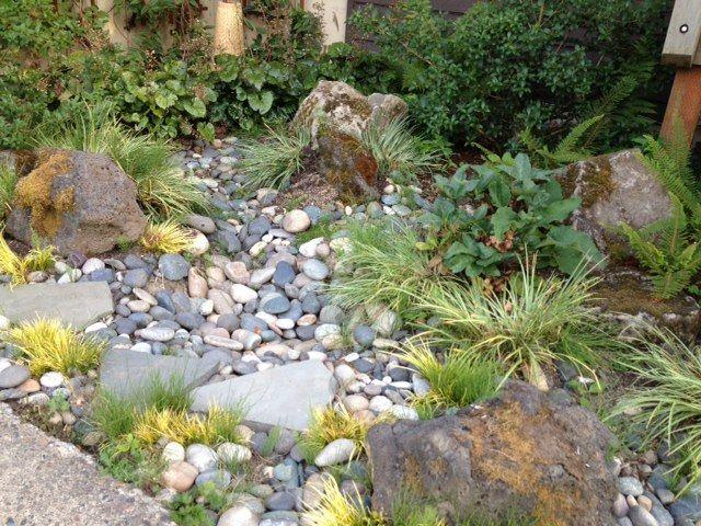 Rain Garden Design For Homeowners   Google Search