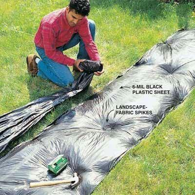 Dream Garden The Family Handyman Diy Tip Of Day Killing Gr Black Plastic Sheeting Makes