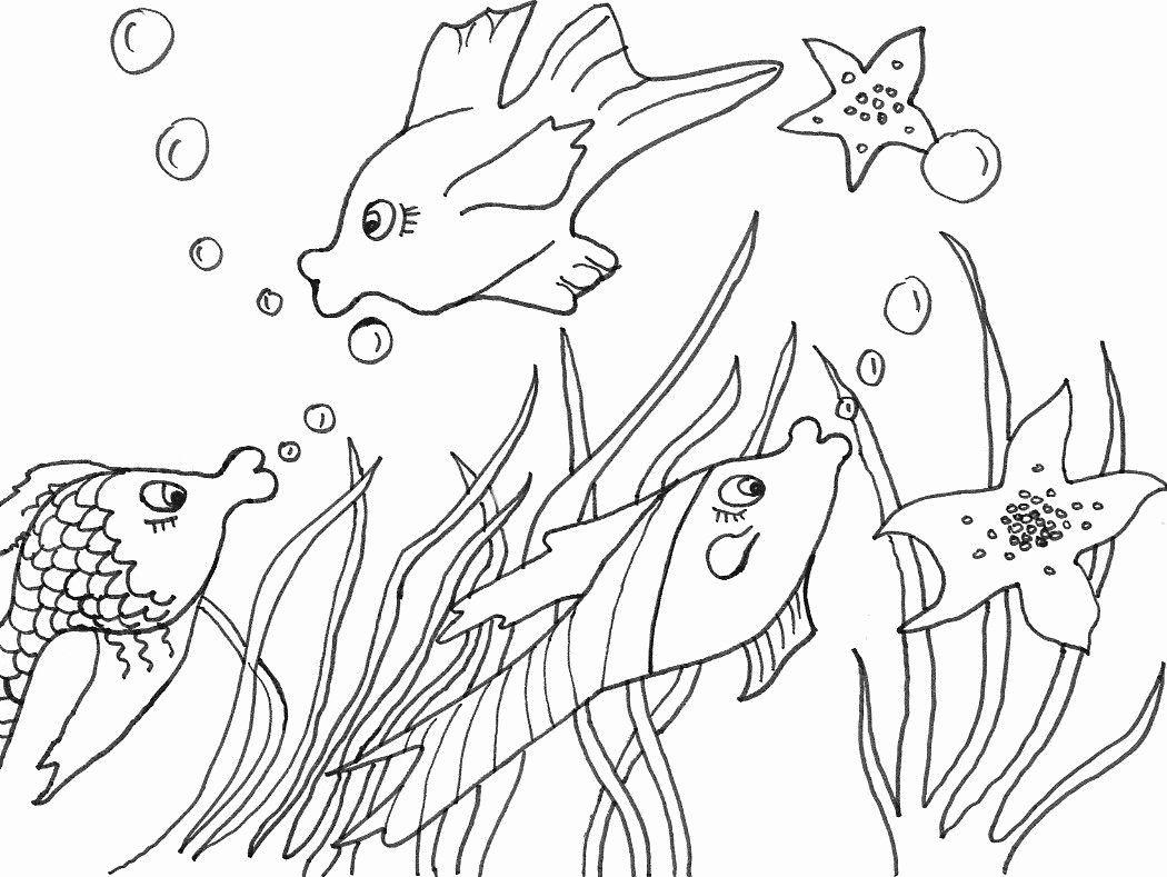 ausmalbilder fische im meer  tiffanylovesbooks