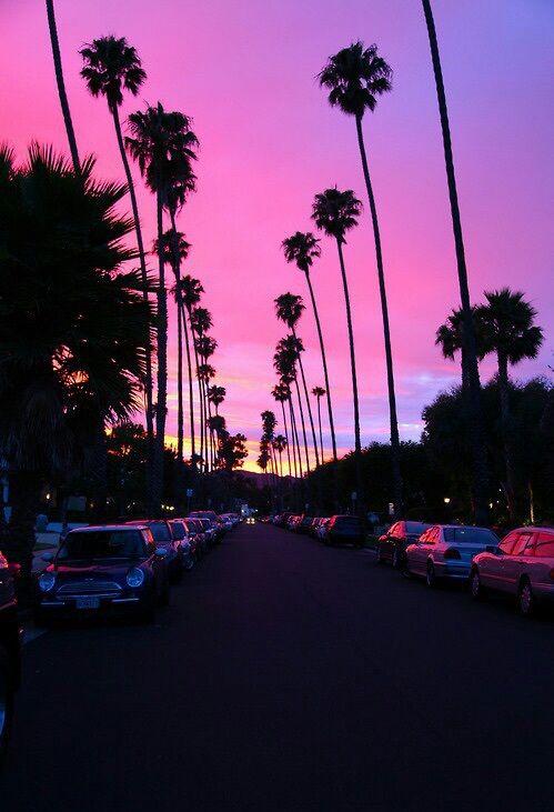 california, cute, la, life, los angeles, palm trees, photography, pink, pretty, purple, sky, street, sunset, travel