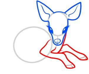 How To Draw A Baby Deer Baby Deer By Dawn With Images Deer