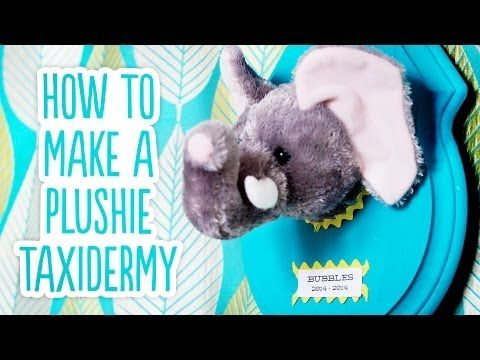 diy stuffed animal taxidermy this is very strange but also i kind