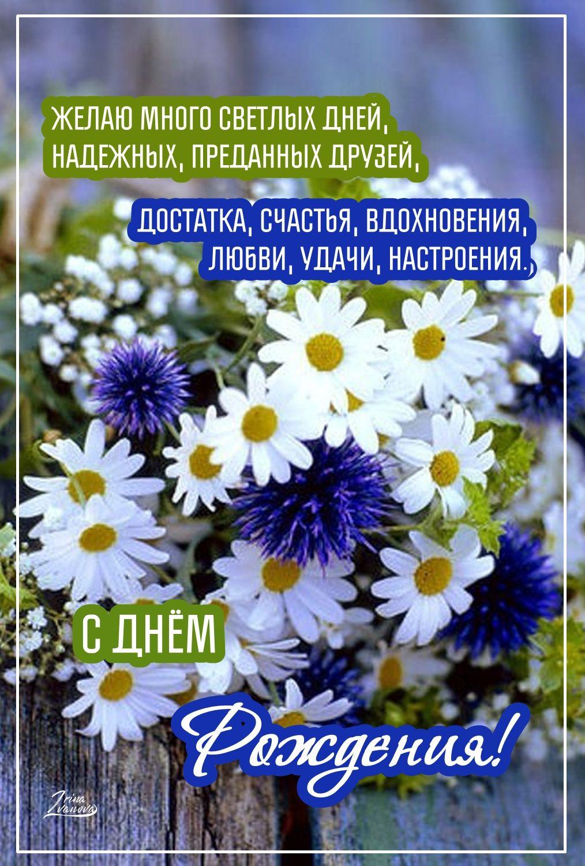 Pozdravleniya S Dnem Rozhdeniya Krasivye V Proze Zhenshine Muzhchine Podruge Mama Sestre S Dnem Rozhdeniya Pozdravitelnye Otkrytki Rozhdenie