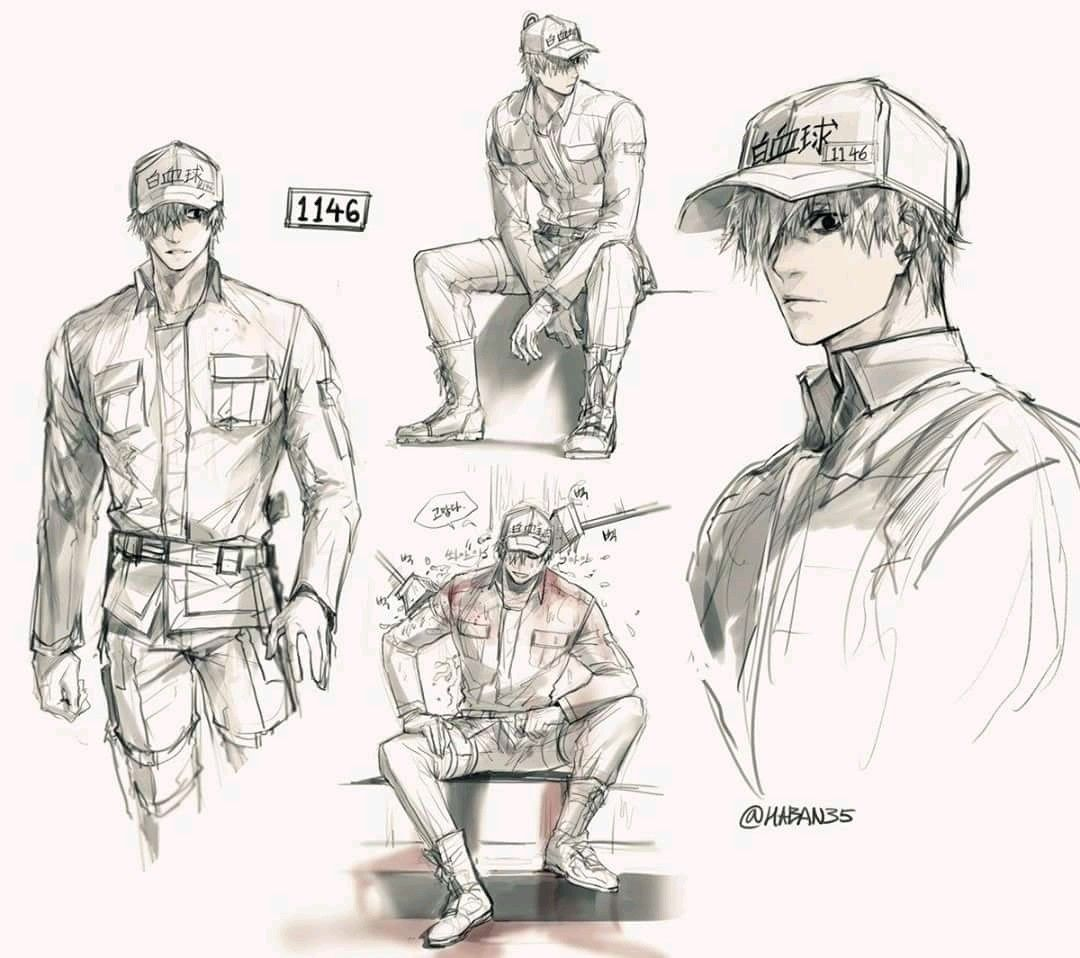 Pin By Frost On Hataraku Saibou Pinterest Manga Anime And Drawings White Blood Cells Diagram Drawing Sketches Sketchbook Art